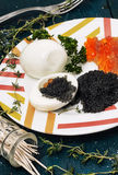 Red and black caviar Stock Image