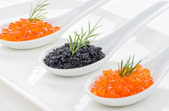 Red and black caviar on spoons Royalty Free Stock Image