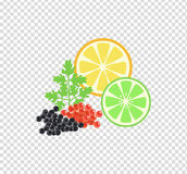 Red and Black Caviar Template Vector Illustration Royalty Free Stock Images