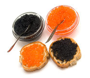 Red and black caviar on white royalty free stock image