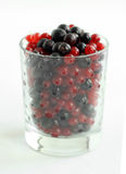 Red and black currant  berries. In a transparent glass Royalty Free Stock Photos