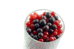 Red and black currant  berries. In a transparent glass Royalty Free Stock Images