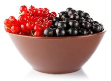 Red and black currant in clay tureen Royalty Free Stock Images