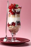 Red and black currant parfait Stock Images