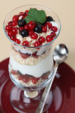 Red and black currant parfait Royalty Free Stock Image