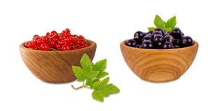 Red and black currant in a wooden bowl  on white background. Stock Images
