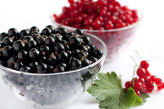 Red and black currants. In a transparent bowl Royalty Free Stock Photos