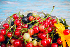Red and black currants with leaves in a bowl on a wooden Royalty Free Stock Images