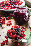Red and black currants. red currant jam with fresh berry Royalty Free Stock Photos