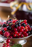 Red and black currants. red currant jam with fresh berry Stock Image
