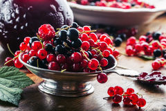 Red and black currants. red currant jam with fresh berry Stock Photography