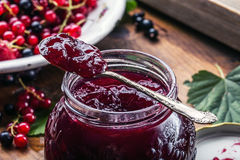 Red and black currants. red currant jam with fresh berry Stock Images