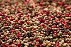 Red, black, green and white peppercorns royalty free stock photos