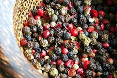 Red, black, green and white peppercorns Stock Photography