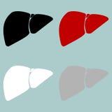 Red black grey white liver hepar icon. royalty free illustration