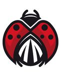 Red and black ladybug or ladybird Royalty Free Stock Photos