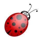 Red black ladybug royalty free illustration