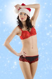 Red and black lingerie and sexy santa claus Stock Photos