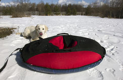 Red and black material snow inner tubing (toobing) on the white Stock Images