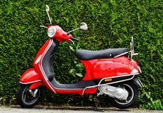 Red and Black Moped Scooter Beside Green Grass Royalty Free Stock Photography