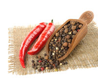 Red and black pepper Royalty Free Stock Photos