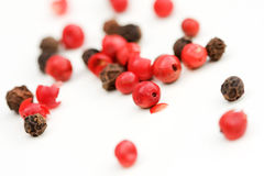 Red an black peppercorns Stock Photos