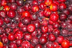 Red, black plum. Red, black plum background unit Stock Photo