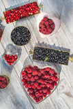 Red and black raspberry and blueberry Stock Photography