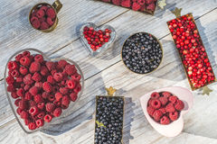 Red and black raspberry and blueberry Royalty Free Stock Photography