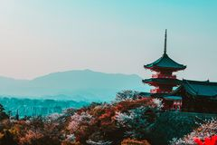 Red and Black Temple Surrounded by Trees Photo stock images