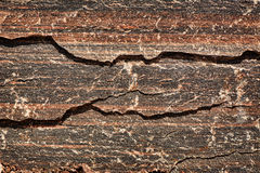 Red & Black Tiger Striped Granite. Detailed close up of the surface of black& red striped natural granite. A great texture image for a background or overlay royalty free stock photo