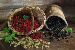 Red, black and white currant on a wooden surface Royalty Free Stock Photo