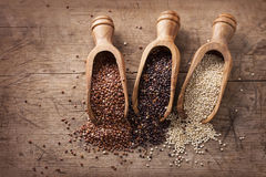 Red, black and white quinoa seeds Royalty Free Stock Photography
