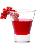 Red blackcurrant syrup Royalty Free Stock Images