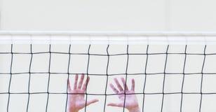 Red blanca del voleibol con las manos del hombre Deporte de personas imagen de archivo
