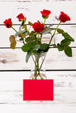 Red blank paper and roses. Royalty Free Stock Image