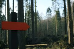 Red blank sign in a forest royalty free stock images