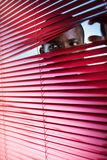Red blinds. Afro-american businessman glancing through red blinds. Copy space stock photography