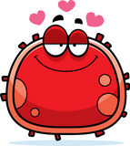 Red Blood Cell Love Stock Photo