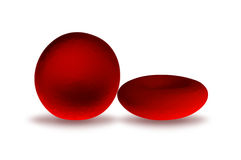 Red blood cells Stock Images