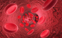Red blood cells erythrocytes in interior of arterial or capillar Stock Image