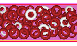 Red Blood Cells. Stock Image