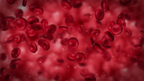 Red blood cells streaming stock footage