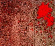 Red Blood on Grunge Wall Stock Photos