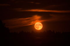 Red blood moon. In night vector illustration