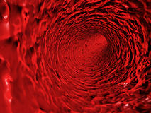 Red blood vessel Royalty Free Stock Photo