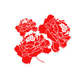 Red Blooming Peony Flower. Illustration Royalty Free Stock Image