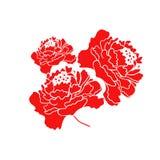 Red Blooming Peony Flower. Illustration vector illustration