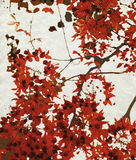 Red blossom print on chalky paper Royalty Free Stock Photo