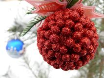 Red and blue balls. On the tree Royalty Free Stock Image